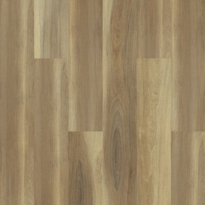 Shaw Floors Resilient Residential Cathedral Oak 720g Plus Shawshank Oak 00168_0870V
