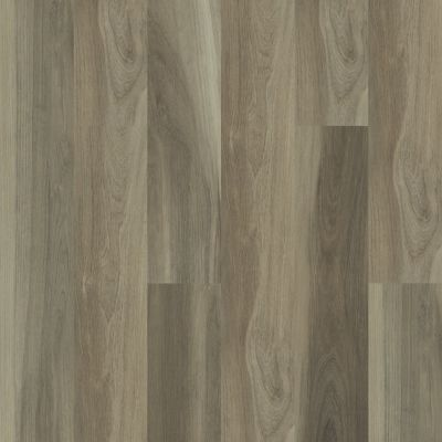 Shaw Floors Resilient Residential Cathedral Oak 720g Plus Chestnut Oak 05010_0870V