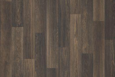 Shaw Floors Resilient Residential Great Basin II Ranger 00727_0874V