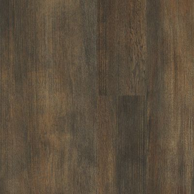 Shaw Floors Vinyl Residential Three Rivers 12 Kings Canyon 05019_0881V