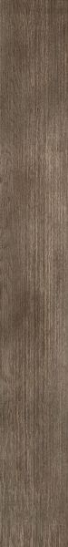 Shaw Floors Vinyl Residential Three Rivers 20 Elmwood 00170_0882V