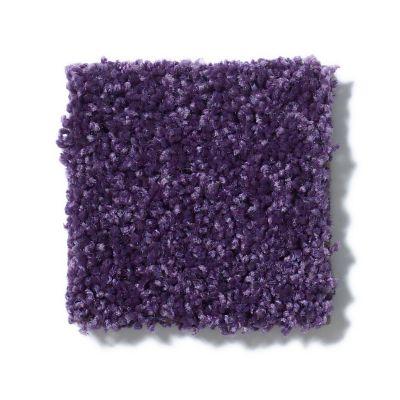 Shaw Floors SFA Take Part 12 Grape Slushy 00931_0C010