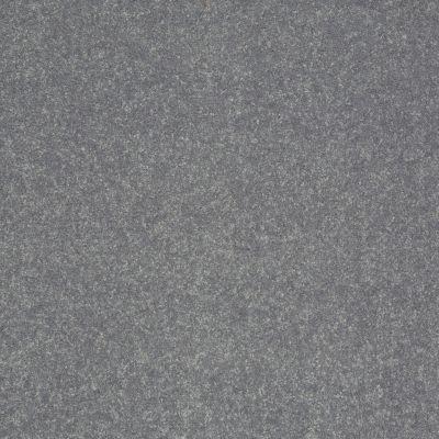 Shaw Floors SFA Enjoy The Moment III 12′ Smoke Embers 00500_0C015
