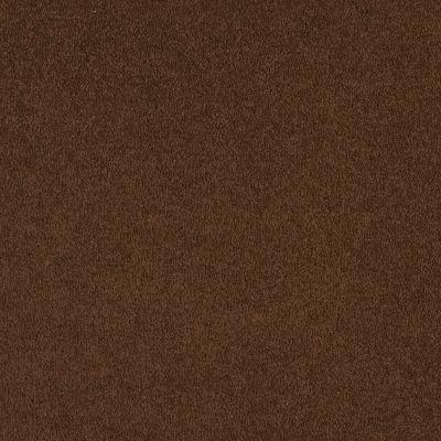 Shaw Floors SFA Born Better (s) Espresso 00707_0C018