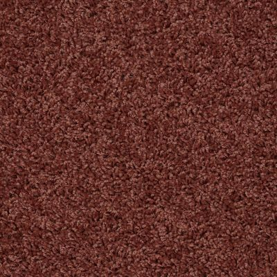 Shaw Floors SFA Everyday Easy Sienna Glaze 33610_0C052