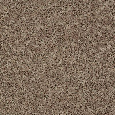 Shaw Floors SFA Everyday Easy Pueblo 33710_0C052