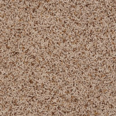Shaw Floors SFA Sophisticated Space Raffia 34210_0C107