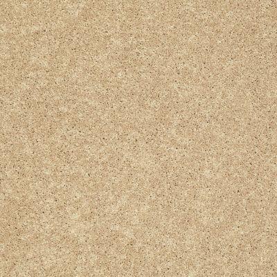 Shaw Floors SFA Vivid Colors I New Morning 00201_0C160