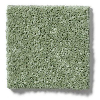 Shaw Floors SFA Vivid Colors I Sweet Grass 00300_0C160