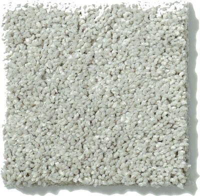 Shaw Floors SFA Vivid Colors I Chrome 00501_0C160