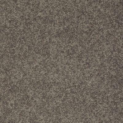 Shaw Floors SFA Vivid Colors I Pewter Haze 00504_0C160