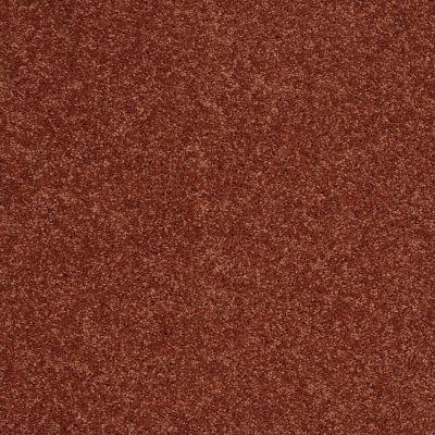 Shaw Floors SFA Vivid Colors I Earthen Ware 00603_0C160