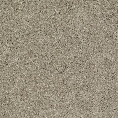 Shaw Floors SFA Vivid Colors I Sand Swept 00703_0C160
