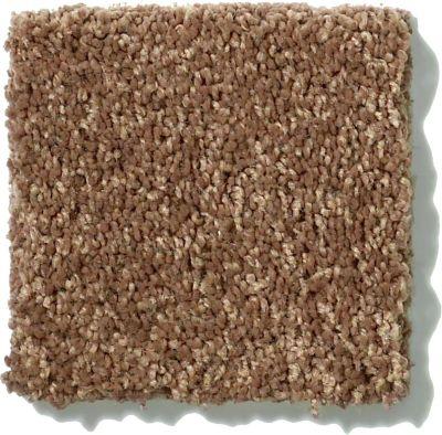 Shaw Floors SFA Vivid Colors I Saddle Soap 00704_0C160