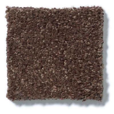 Shaw Floors SFA Vivid Colors I Rich Leather 00705_0C160