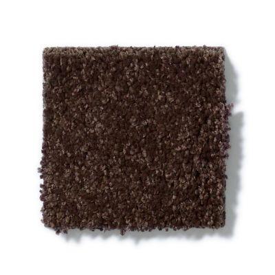Shaw Floors SFA Vivid Colors I Dark Chocolate 00706_0C160