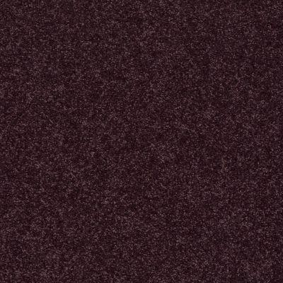 Shaw Floors SFA Vivid Colors I Grape Wine 00901_0C160