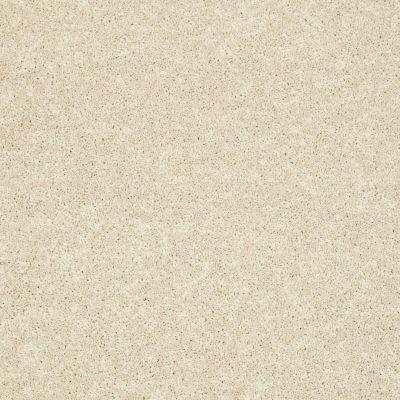 Shaw Floors SFA Vivid Colors II Biscuit 00104_0C161