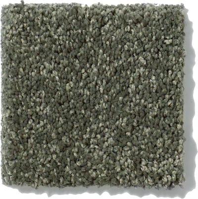 Shaw Floors SFA Vivid Colors II Olive Yard 00301_0C161