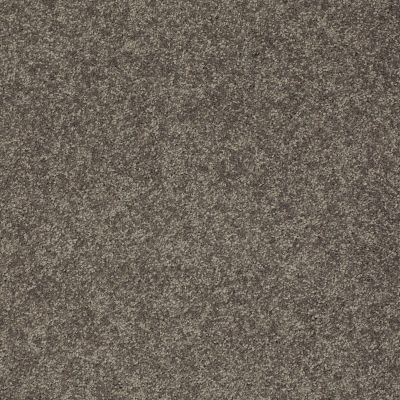 Shaw Floors SFA Vivid Colors II Pewter Haze 00504_0C161