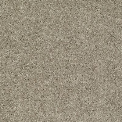 Shaw Floors SFA Vivid Colors II Sand Swept 00703_0C161