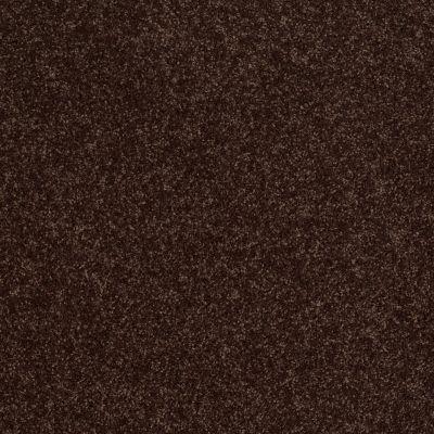 Shaw Floors SFA Vivid Colors II Dark Chocolate 00706_0C161