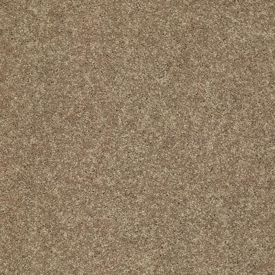 Shaw Floors SFA Vivid Colors II Safari 00707_0C161