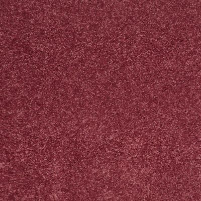 Shaw Floors SFA Vivid Colors II Berry Kiss 00801_0C161