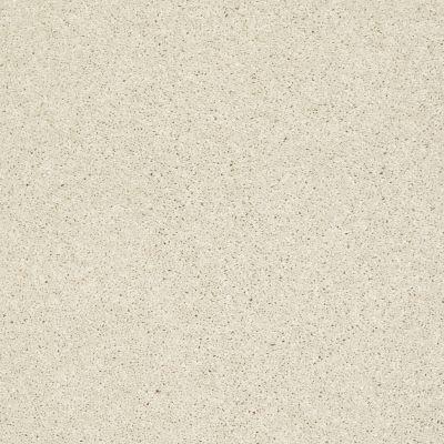 Shaw Floors SFA Vivid Colors III Antique Pearl 00101_0C162