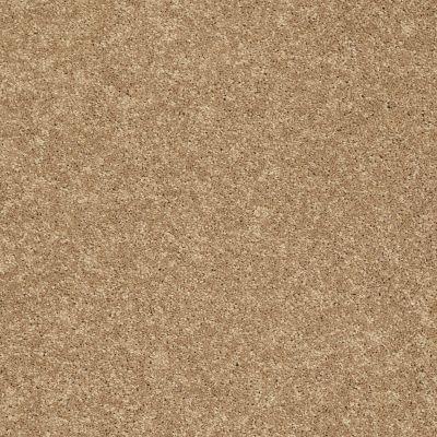 Shaw Floors SFA Vivid Colors III Rattan 00202_0C162