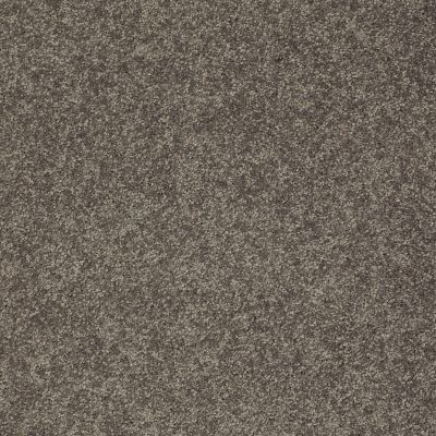 Shaw Floors SFA Vivid Colors III Pewter Haze 00504_0C162