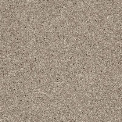 Shaw Floors SFA Vivid Colors III Wild Mushroom 00700_0C162