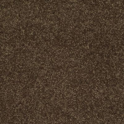 Shaw Floors SFA Vivid Colors III Rich Leather 00705_0C162