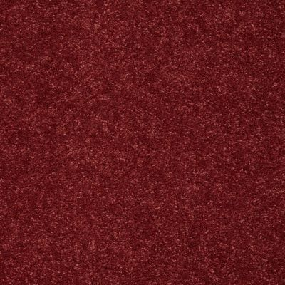 Shaw Floors SFA Vivid Colors III Ravishing Red 00802_0C162