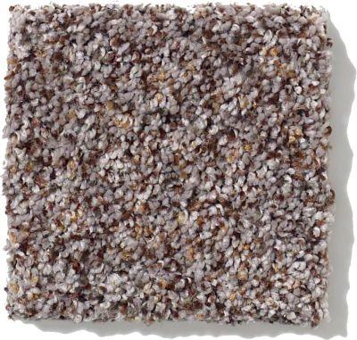Shaw Floors SFA Rugged Texture 00540_0C168