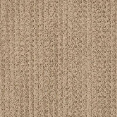 Shaw Floors SFA Celebrate With Me Wood Grain 00701_0C186