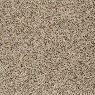 Shaw Floors SFA Belong With Me Sandbank 00102_0C197