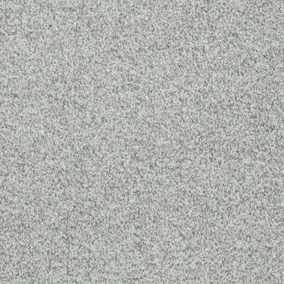 Shaw Floors SFA Explore With Me Texture Portobello 00501_0C202