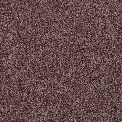 Shaw Floors SFA Explore With Me Texture Rye 00702_0C202