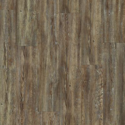 Shaw Floors Reality Homes Dungeness Tattered Barnboard 00717_100RH
