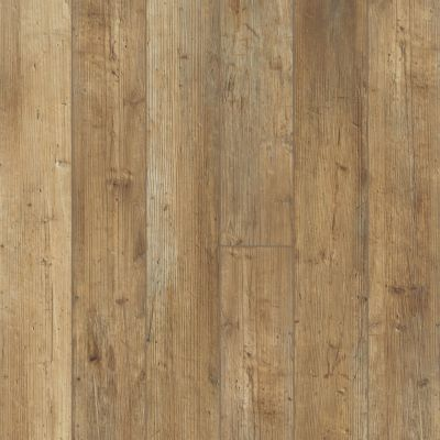 Shaw Floors Resilient Residential Paragon 5″ Plus Touch Pine 00690_1019V