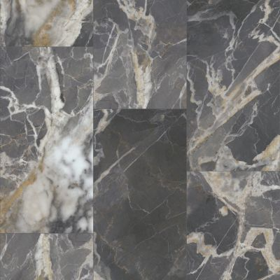 Shaw Floors Resilient Residential Paragon Tile Plus Marquina 00488_1022V