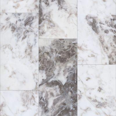 Shaw Floors Resilient Residential Paragon Tile Plus Ibizia 01108_1022V