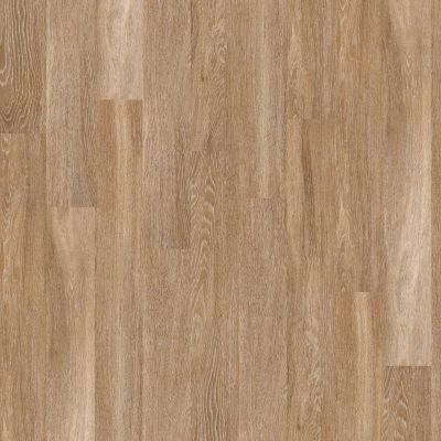 Shaw Floors Exclusive Pacific Coast12 Brussels 00235_1029V