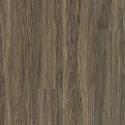 Shaw Floors Reality Homes Rialto Beach Cinnamon Walnut 00150_102RH