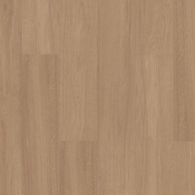 Shaw Floors Resilient Residential Pantheon Hd+ Natural Bevel Honeycomb 06012_1051V
