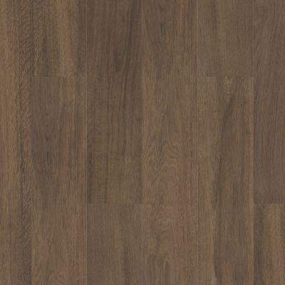Shaw Floors Resilient Residential Pantheon Hd+ Natural Bevel Cordovan 07233_1051V