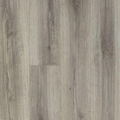 Shaw Floors Reality Homes Makah Lince 00571_109RH