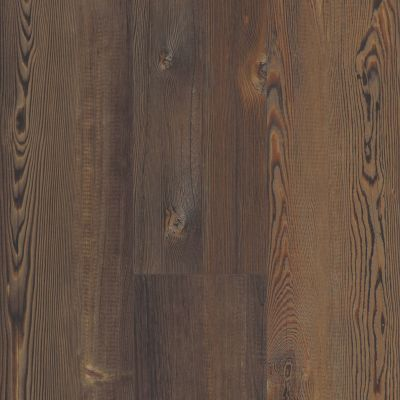 Shaw Floors Reality Homes Lava Beds Forest Pine 00812_110RH