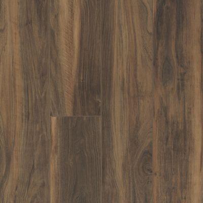 Shaw Floors Reality Homes Cascadia Terreno 00737_112RH